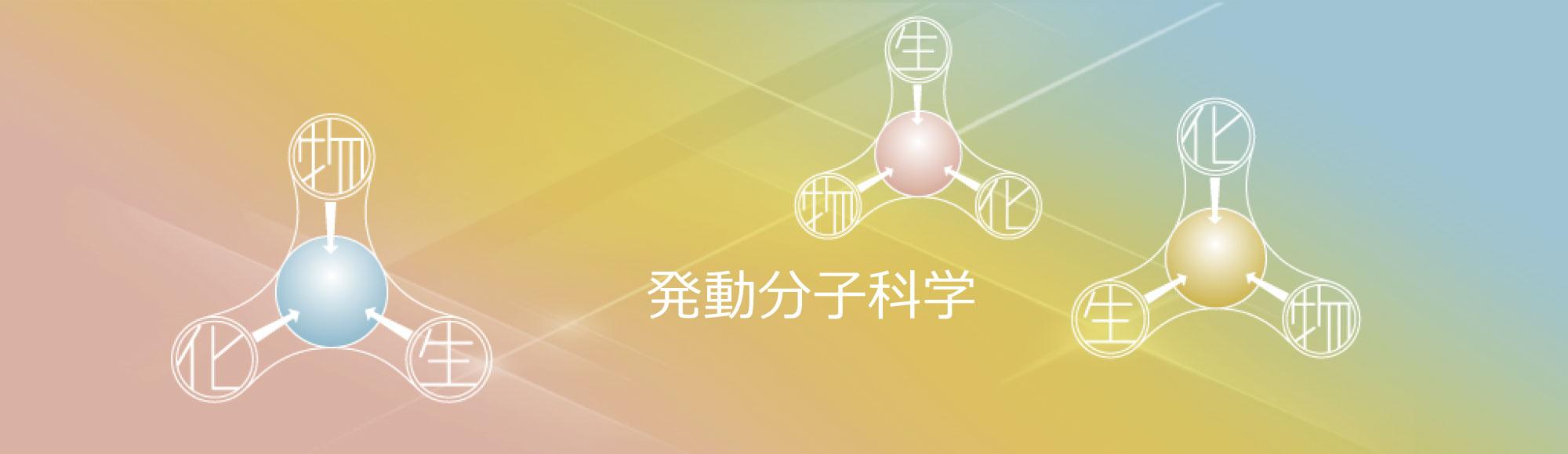 Yoshiyuki Kageyama Webpage